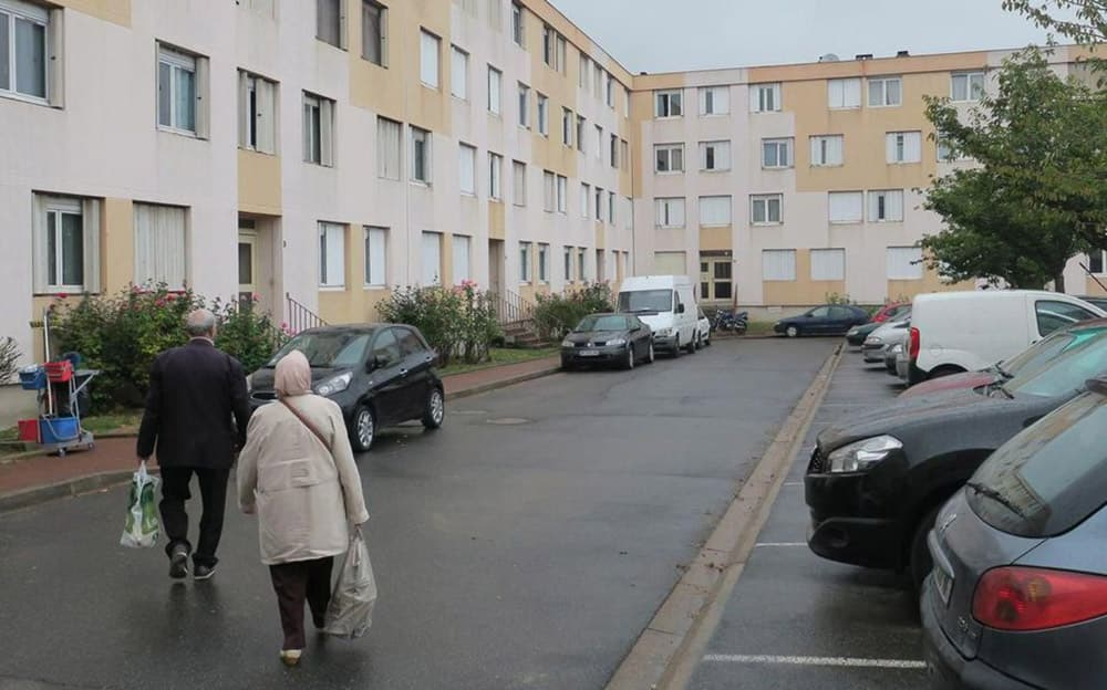 dératisation Champigny-sur-Marne