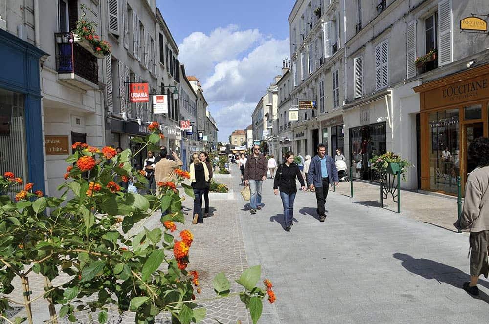 punaise de lit Rueil-Malmaison