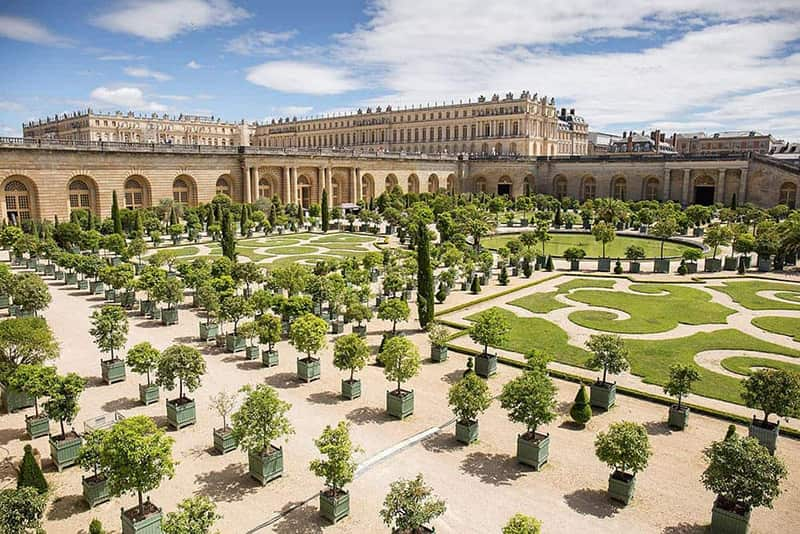 désinsectisation Versailles